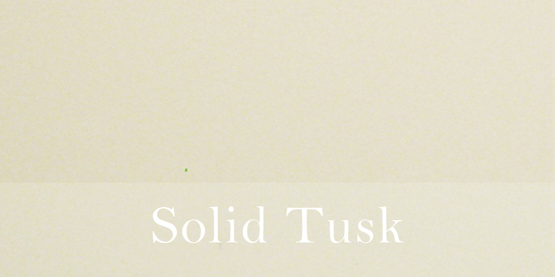 Solid Tusk